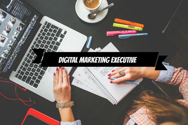 Digital Marketing Executive là gì? 4 nhiệm vụ quan trọng của một DMEer