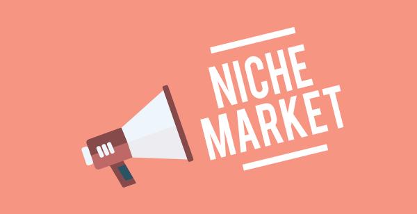 Vì sao doanh nghiệp không nên bỏ lỡ thị trường ngách?