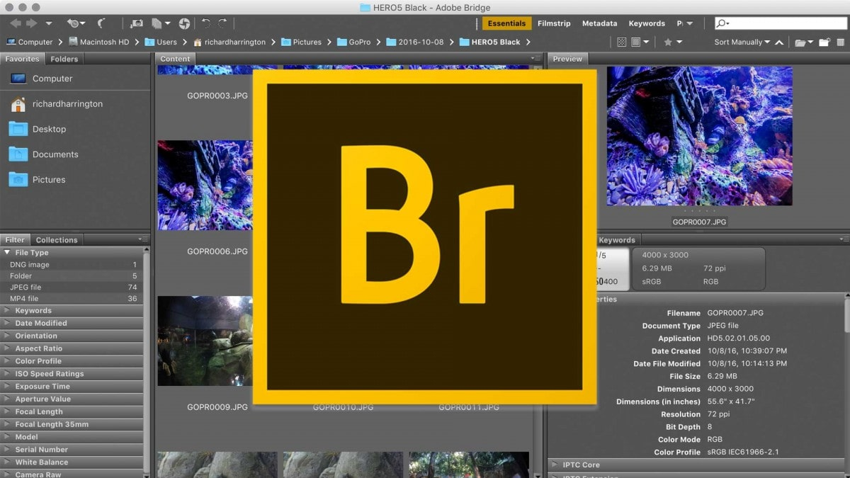 Adobe Bridge là gì? Những lý do nên sử dụngAdobe Bridge
