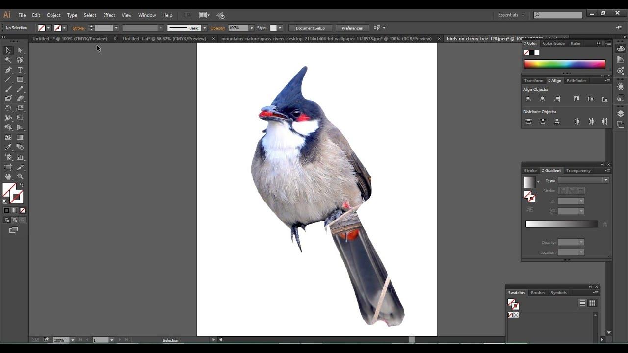 """Cách xóa background trong Illustrator """"dễ như ăn kẹo"""""""