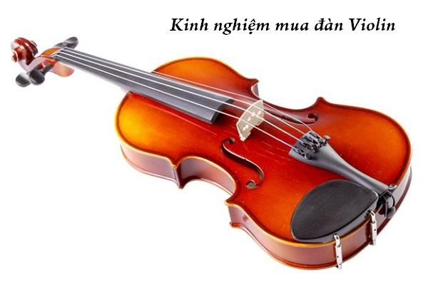Mách bạn kinh nghiệm mua đàn Violin phù hợp nhất với mình