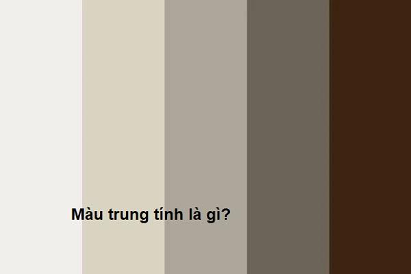 Màu trung tính là gì? Tại sao nên sử dụng màu trung tính trong thiết kế nội thất?