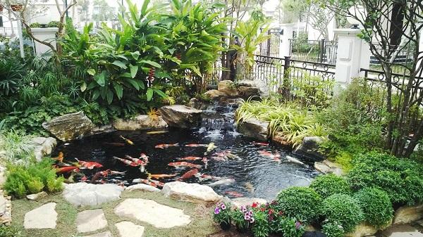 Thiết kế tiểu cảnh sân vườn cần lưu ý điều gì?
