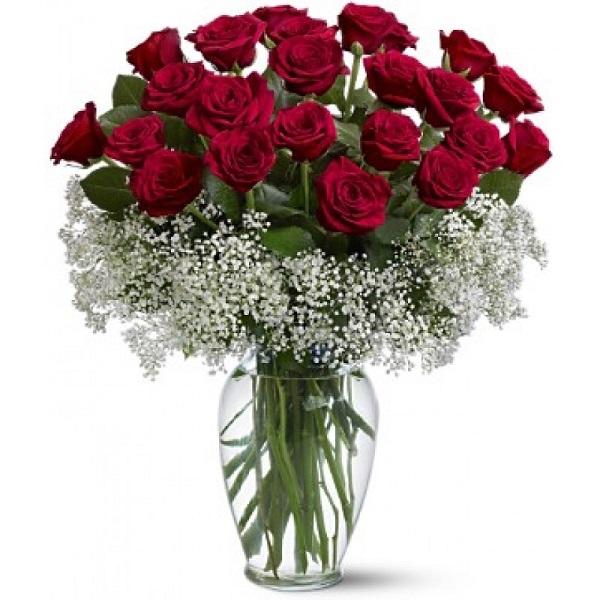 Cách cắm hoa hồng lọ cao đơn giản cho người mới bắt đầu