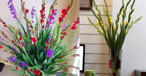 Rộn ràng sắc xuân với 3 cách cắm hoa dơn đẹp xuất sắc