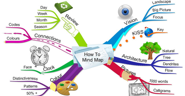 Mindmap là gì? Làm thế nào vẽ sơ đồ tư duy hiệu quả?