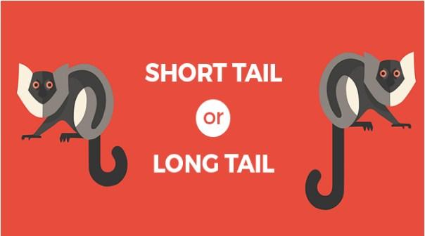 Khi SEO nên chọn từ khóa ngắn hay dài?