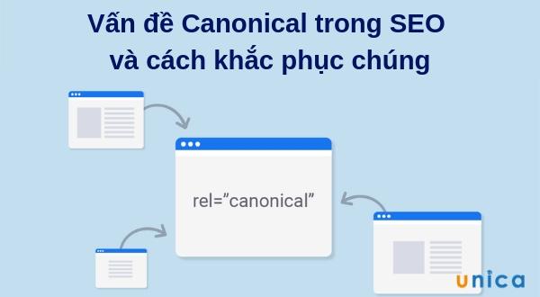 Vấn đề Canonical trong SEO và cách khắc phục