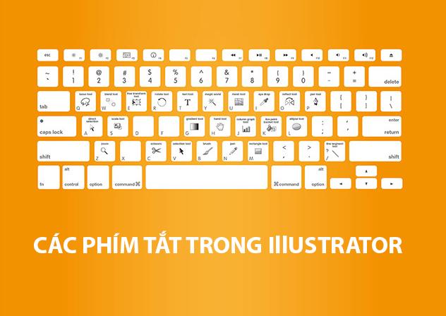 Khám phá phím tắt trong illustrator được sử dụng nhiều nhất