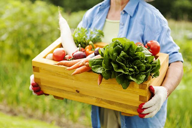 """7 yếu tố """"buộc phải nhớ"""" khi kinh doanh nông nghiệp sạch"""