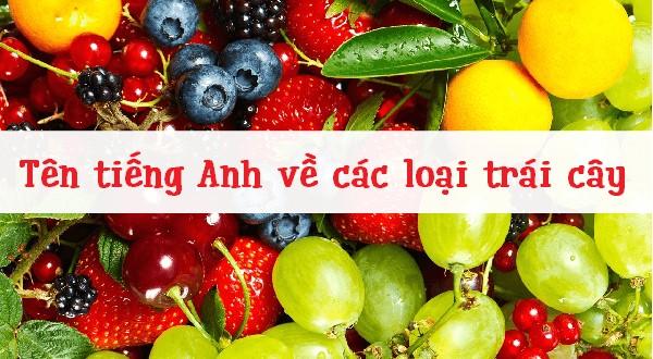 Tên các loại trái cây bằng tiếng Anh dễ ghi nhớ